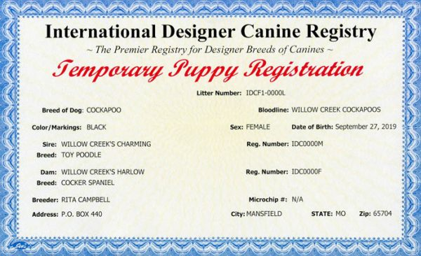 Temporary Puppy Certificate